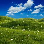 Holliewood_Topiary_Paper5.jpg