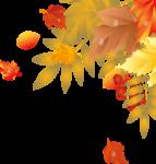 Осень83