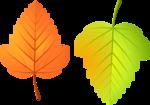 Осень128