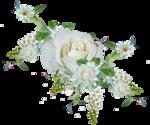 MRD_LoveUMama_Clusters5.png
