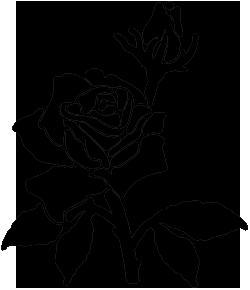 Черно-белые силуэты роз.