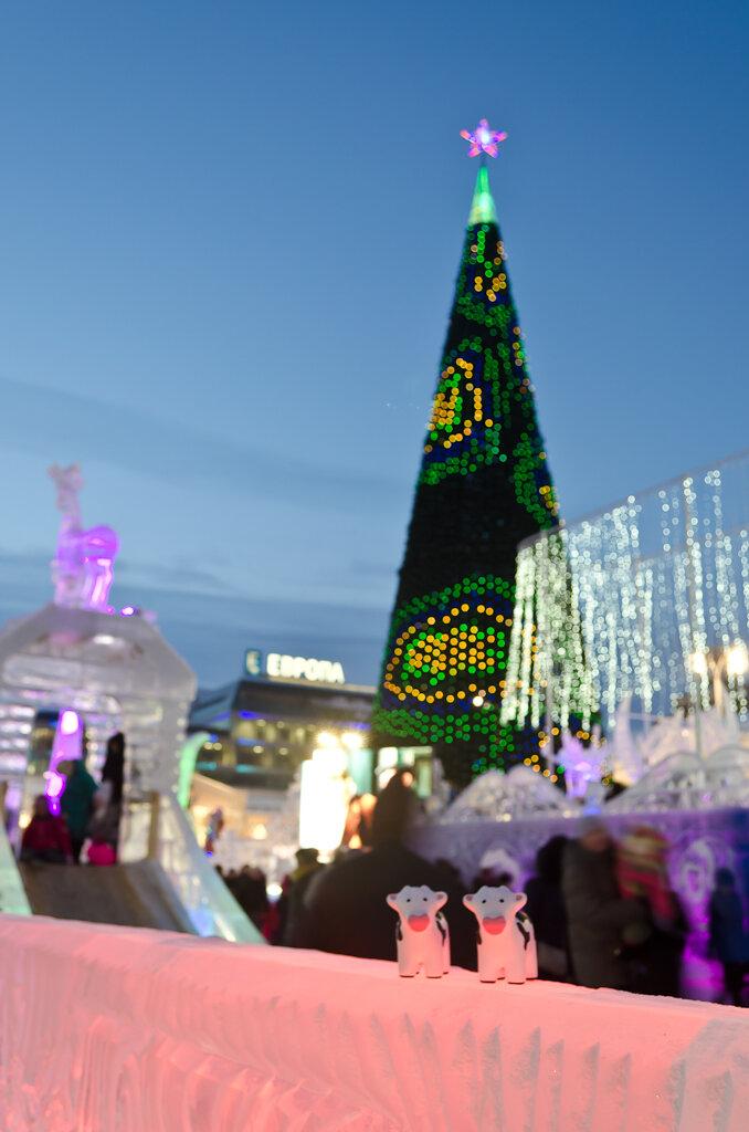 Фотография. Ребята, а ведь совсем уже скоро - Новый год!.. Ледовый городок в Екатеринбурге. Съемка на Nikon D5100 KIT 18-55 в вечернее время.