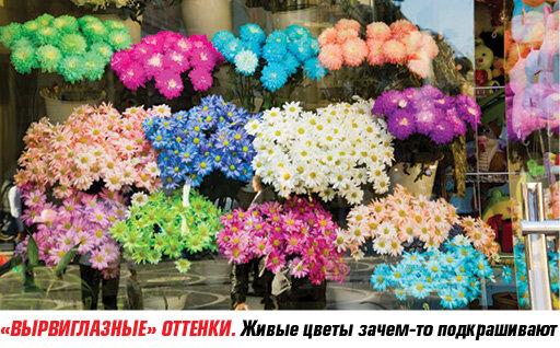 http://img-fotki.yandex.ru/get/9507/94278567.41/0_b98c5_c7a1745f_XL.jpg
