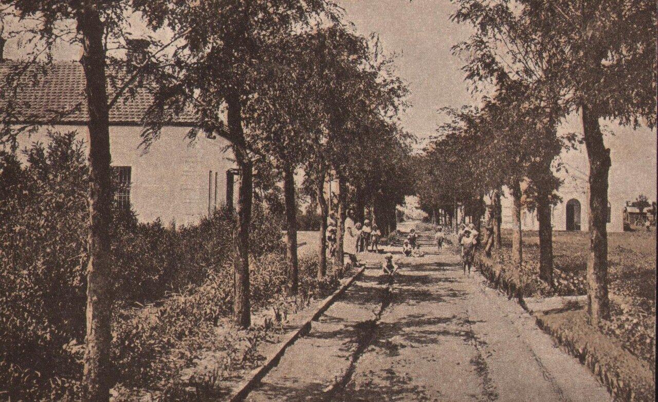 Лузановка. Санаторий. Главная аллея.20-е годы
