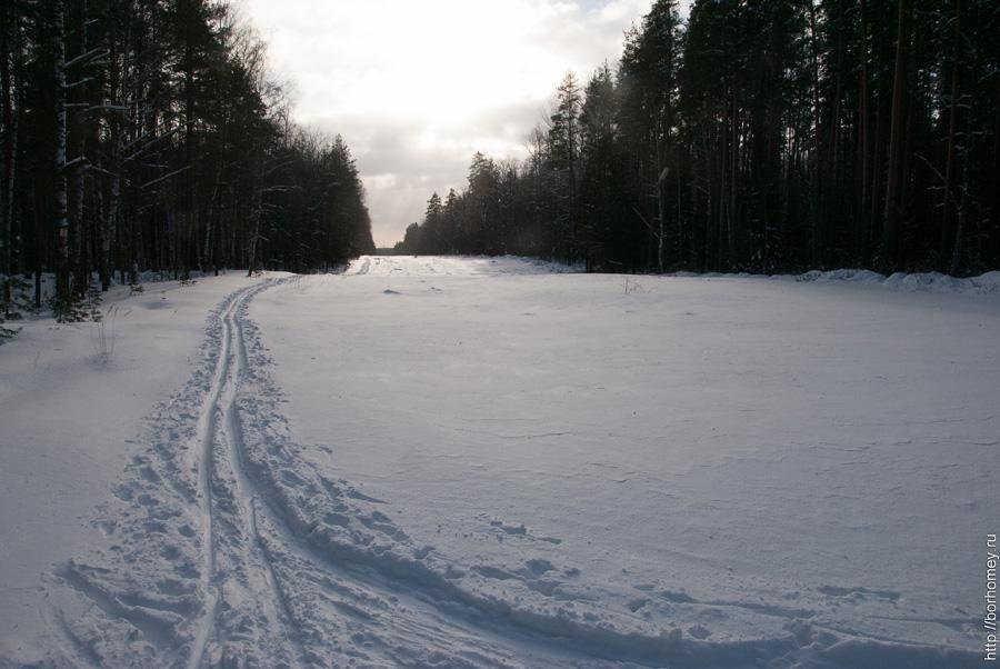 лыжня в сарове