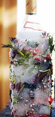 Ледяная бутылка