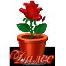 Надпись ДАЛЕЕ 0_d3d47_f259e4d9_S