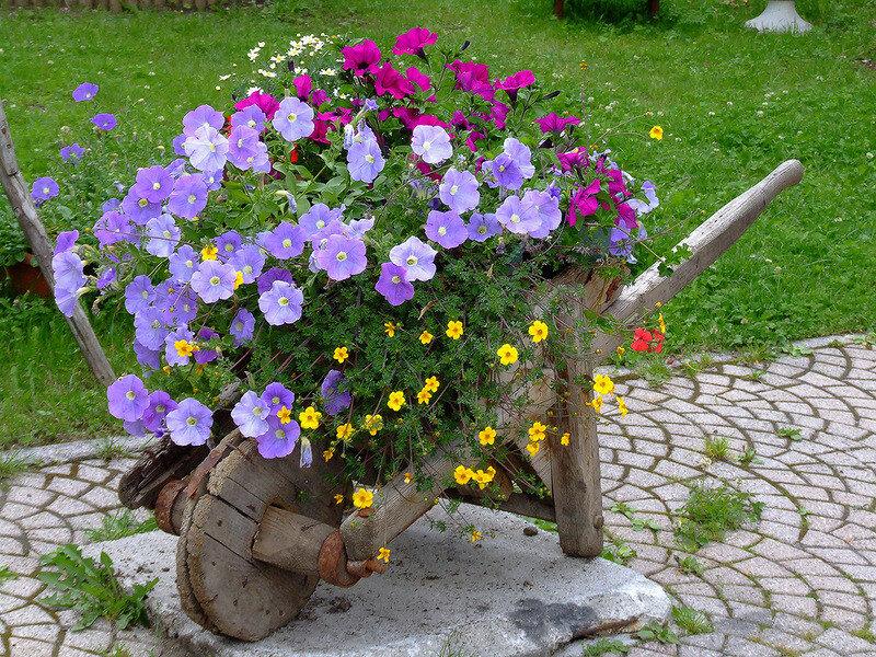 Как красиво оформить дачу цветами