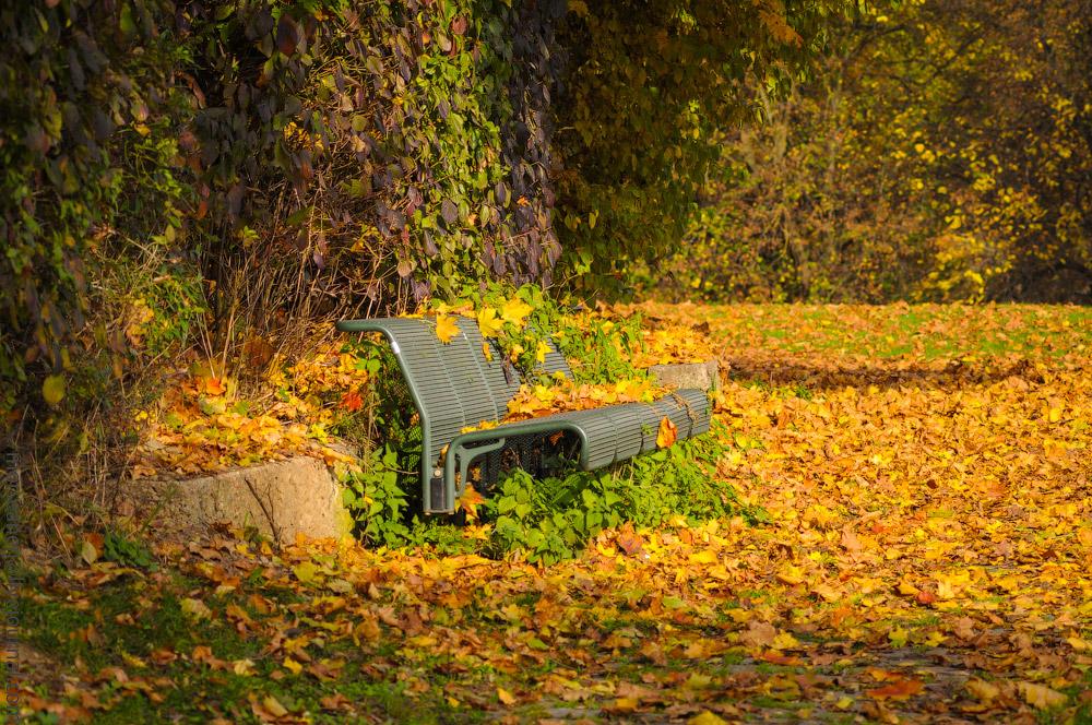 Herbst-Munchen-2013-(47).jpg