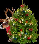 MRD_SnowyDreams-greentree-raindeer.png