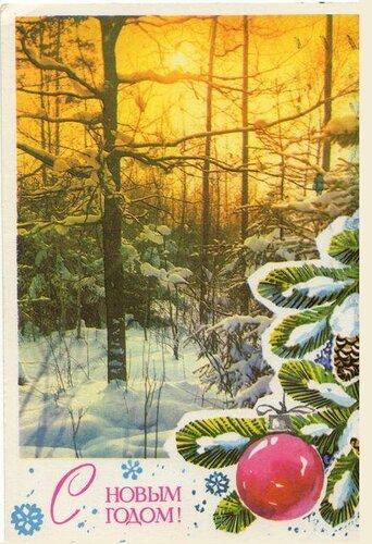 Солнце осветило лес. С Новым годом! открытка поздравление картинка