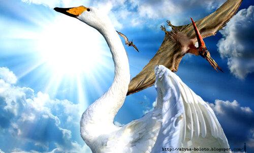 Память птицы