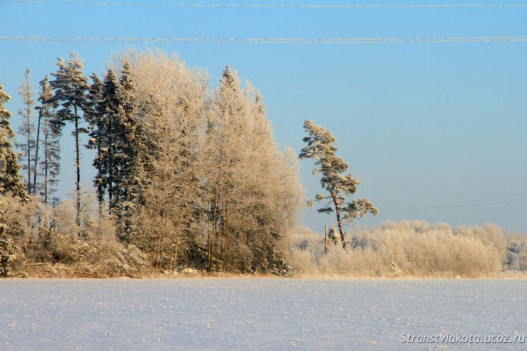Эстония, зимние дороги