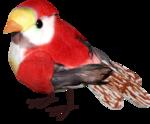 ditab bird1.png