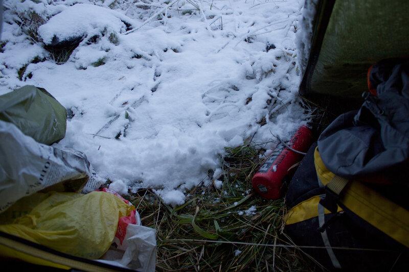 вид утром из палатки на снег