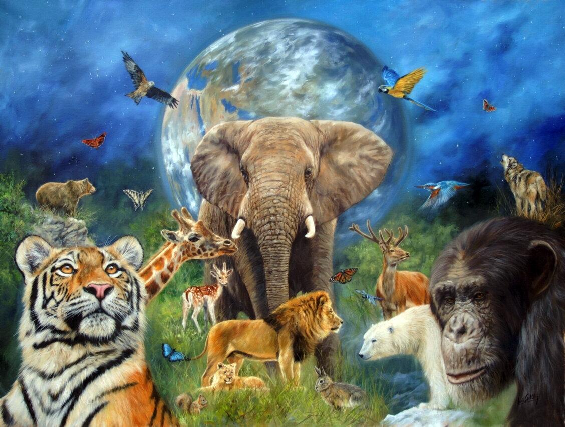 заработать весь животный мир в картинках собиралась много