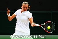 http://img-fotki.yandex.ru/get/9510/14186792.48/0_da3e5_d266cda2_orig.jpg