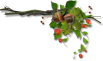 autumn dreams by_mago74 PNG (4).png