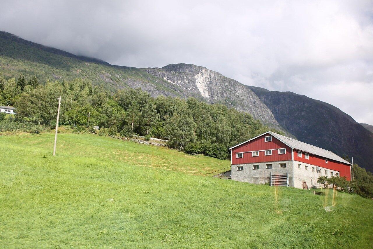 Стрюн, Фьордвеген