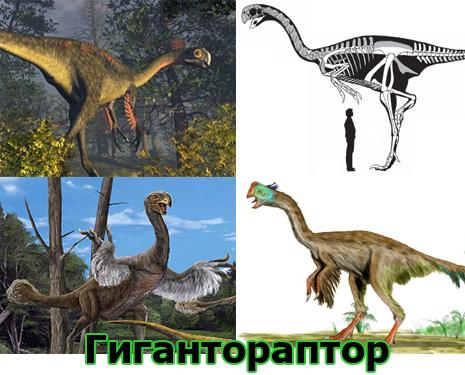 Самые большие животные в мире, существовавшие на земле (фото 2)