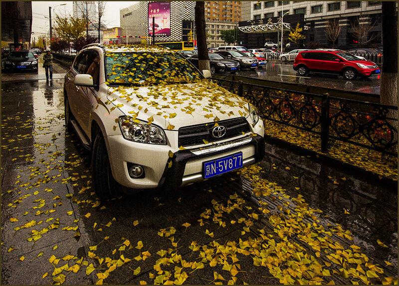 В Китае тоже осень...