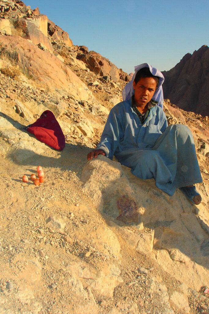 Фото 16. Наш отзыв об экскурсии на гору Моисея в июле. Что ждет его в будущем? Арабская весна?