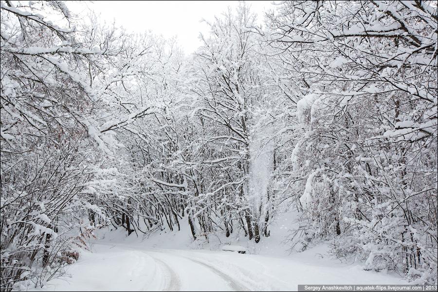 Суровая зима картинки
