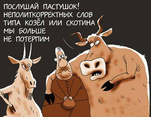 smeshnaya_galereya_fotoprikolo_2388566.jpeg