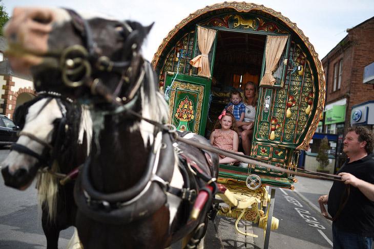 2. Помой коня. Ярмарка лошадей, 5 июня 2004. (Фото Chris Furlong):