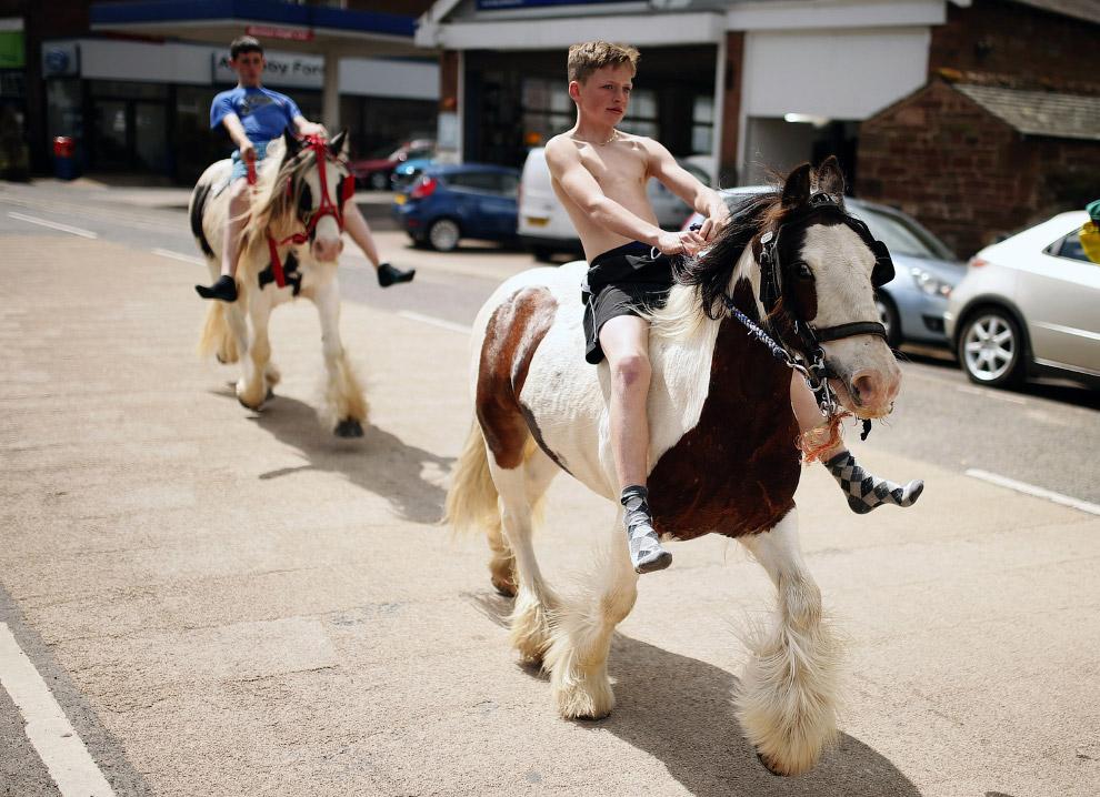 5. Не нужна карета? Продается. Ярмарка лошадей, 5 июня 2014. (Фото Nigel Roddis):