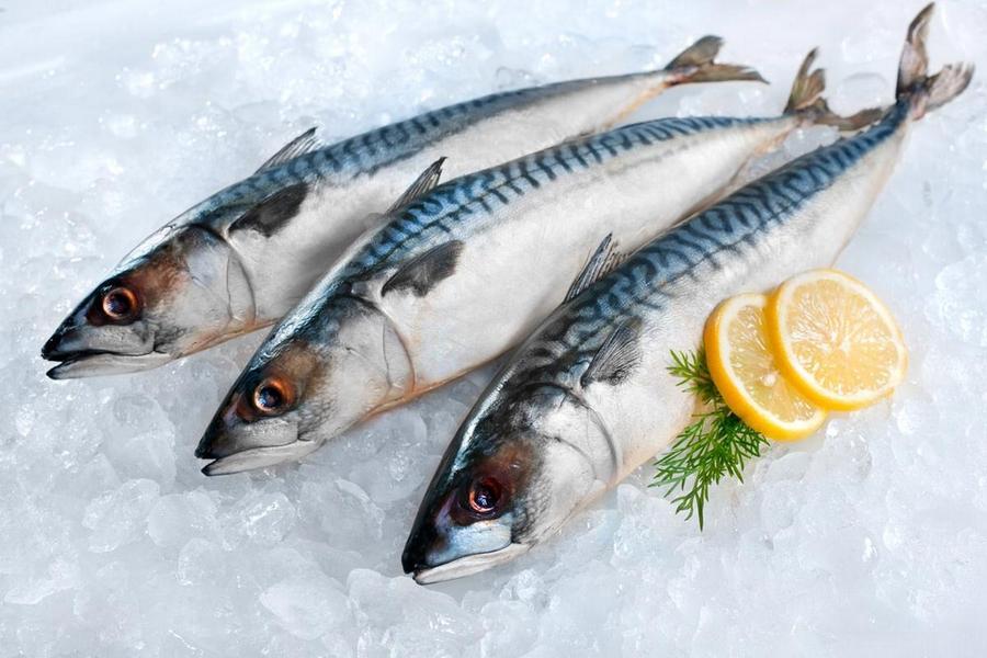 9. Свежая скумбрия Рыба очень полезна для организма, а особенно это относится к свежей скумбрии. Име