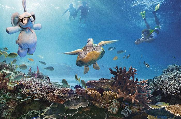Тусуется с черепахами у Большого Барьерного рифа.