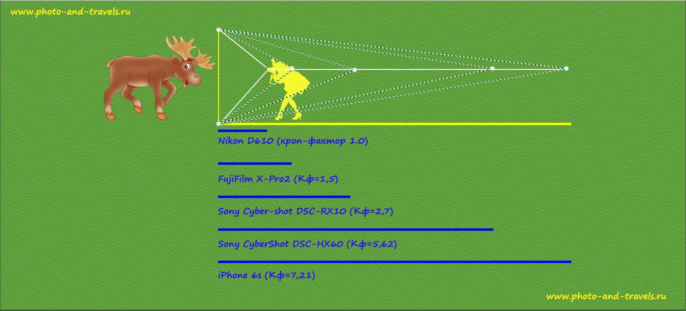 Рисунок 15. Сужение угла поля зрения в зависимости от кроп-фактора и необходимость отходить подальше пропорционально изменению этого параметра.