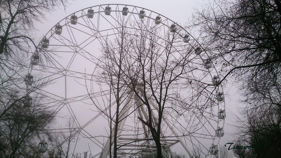 колесо--18.jpg