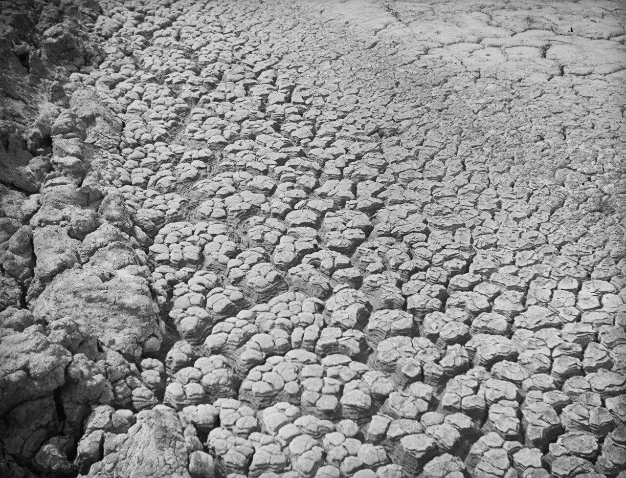 Южно-Сахалинский грязевой вулкан. Зона I (внешняя зона)