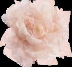 розовый сладкий день (15).png