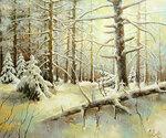 Утро в зимнем лесу  х.м.50-60 2012.JPG