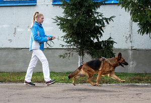 http://img-fotki.yandex.ru/get/9511/195910437.1c/0_cd048_a2a26ff0_M.jpg
