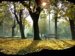 осень0X960-piksel.png