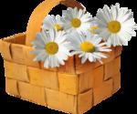 baskets-корзинки