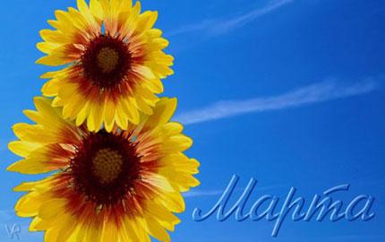 8 Березня! Жовті квіти на тлі неба листівка фото привітання малюнок картинка