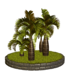 Palms  (31).png