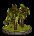 Palms  (31).png