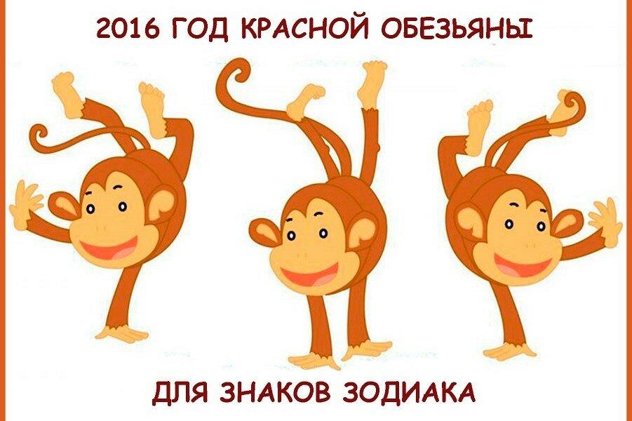 Гороскоп на новый год с юмором