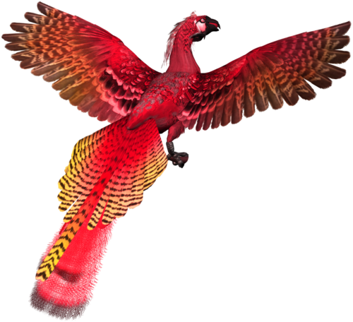 feli_l_fire bird3.png