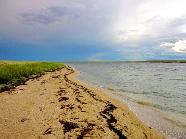 пляж на Донузлаве
