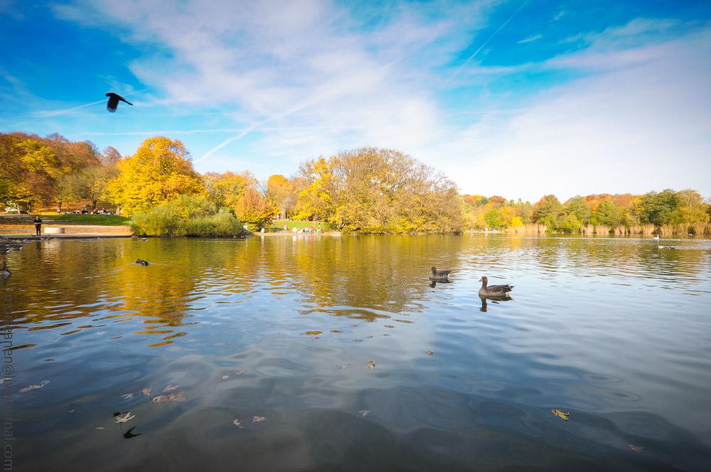 Herbst-Munchen-2013-(58).jpg