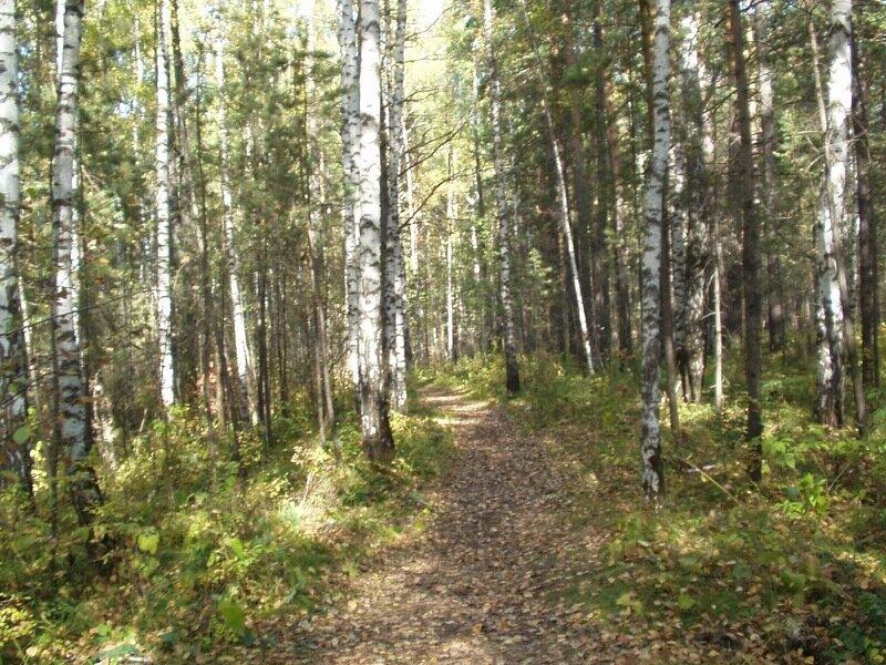 Каштаковская тропа