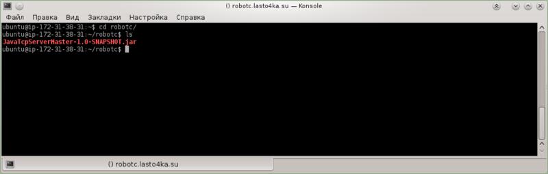 konsole_ssh1_robotserver_check.png