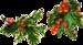 21_Christmas (156).png